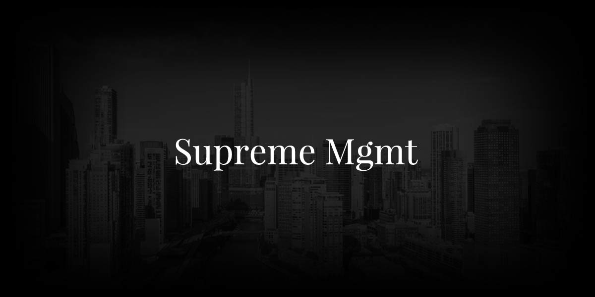 Supreme Management: Working With Neo 2, Harper's Bazaar & Co.