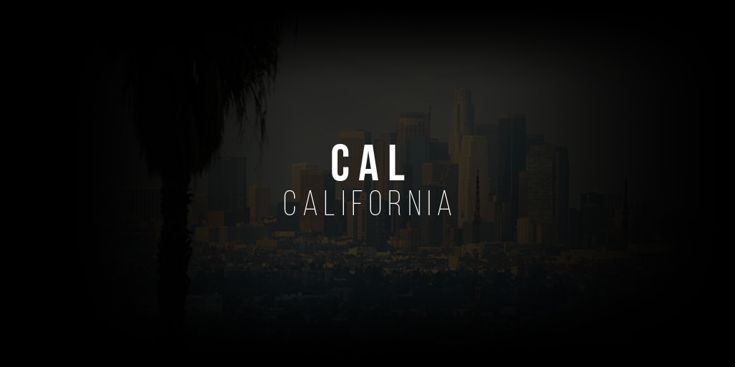Become a Model in California: Modeling Agencies in Los Angeles, San Diego and Co.